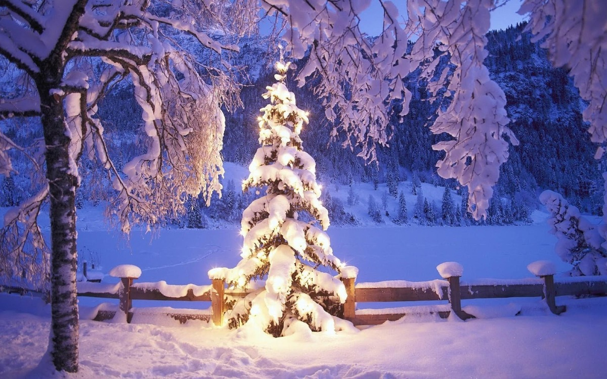 hd-kerst-wallpaper-met-een-verlichte-kerstboom-bedekt-met-een-laag ...