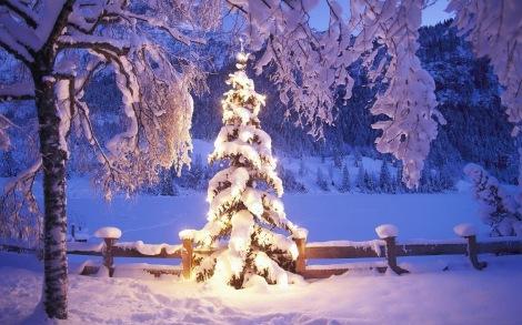 En om stijlvol af te sluiten: fijne kerstdagen!
